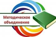 Февральское заседание РМО социальных педагогов